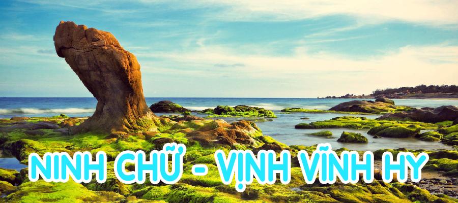 NINH CHU